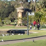 Sydney Royal Botanical Gardens